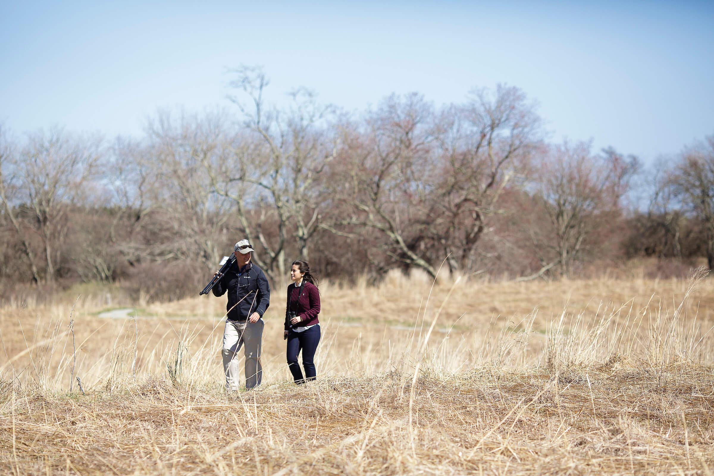 Nature Lovers grassland